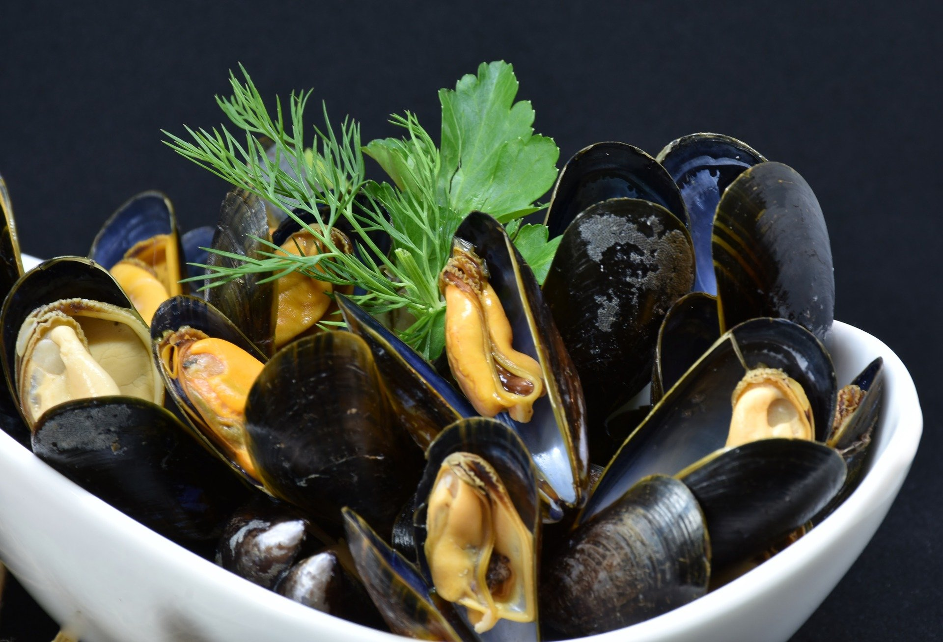 mussels-3148429_1920