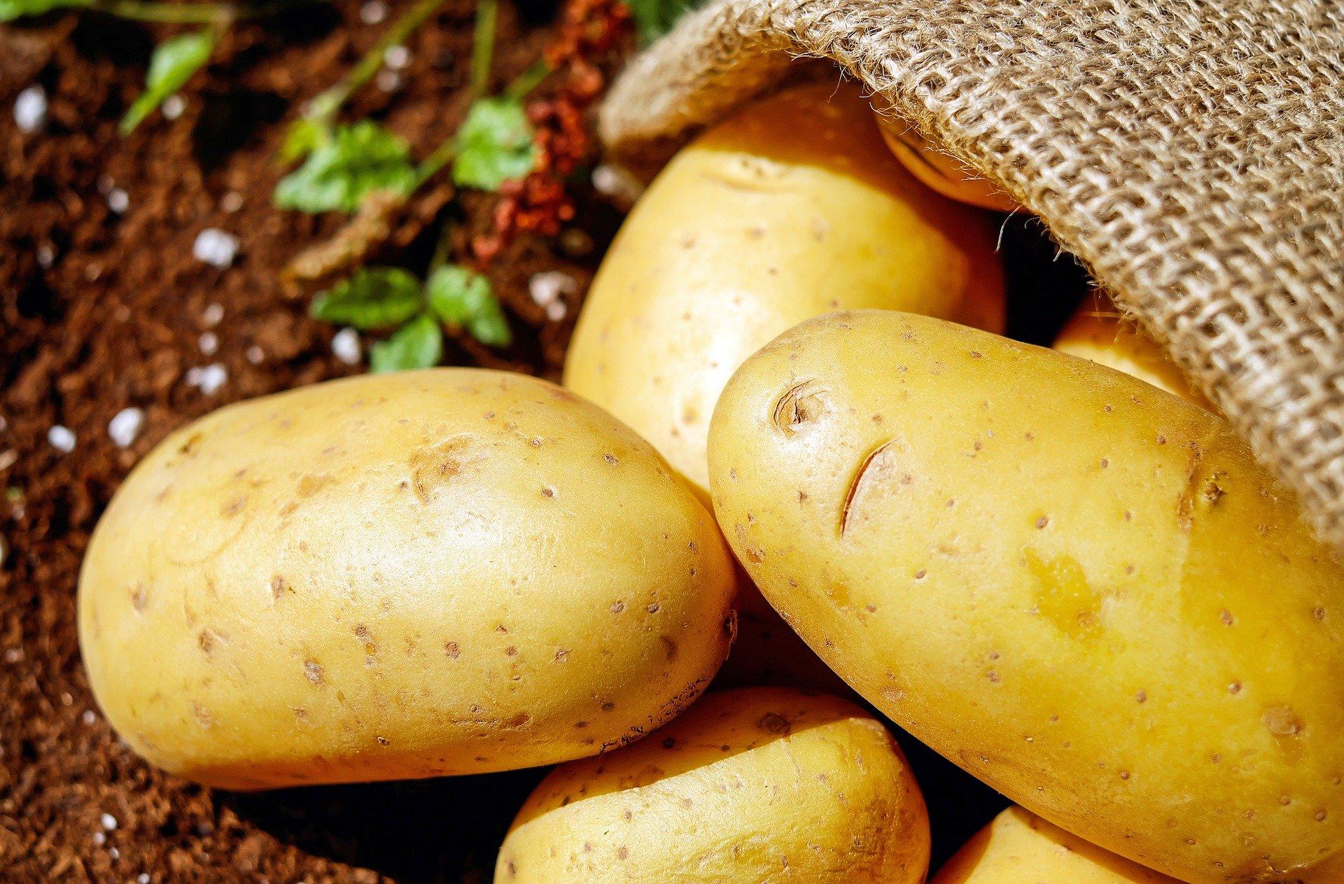 potatoes-1585060_1920