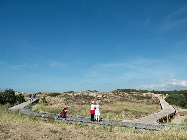 promenade-dunes-famille-2015-jd-ldd